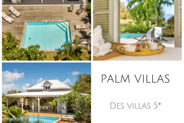 Palm Villas, location de villas 5*